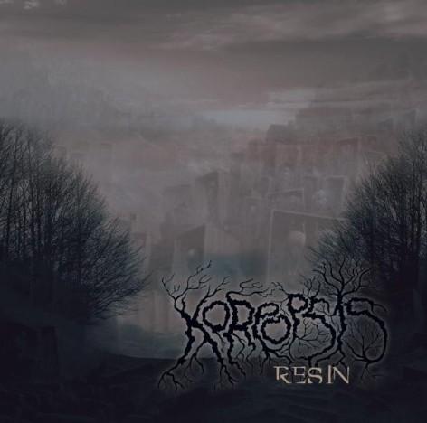 Koreopsis - Resin
