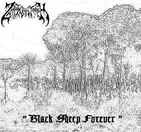 Zarach 'Baal' Tharagh - Demo 60 - Black Sheep Forever