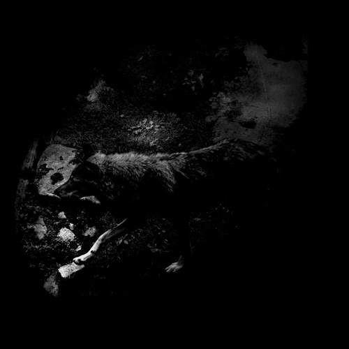 October Falls - The Womb of Primordial Nature