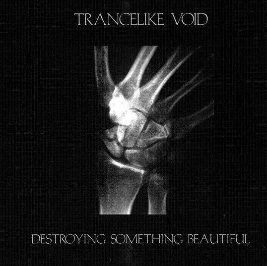 Trancelike Void - Destroying Something Beautiful