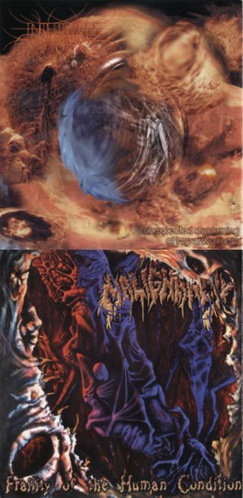 Malignancy / Intervalle Bizzare - Unexpected Awakening of Impassive Mass / Fraility of the Human Condition