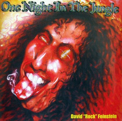 David Rock Feinstein - One Night in the Jungle