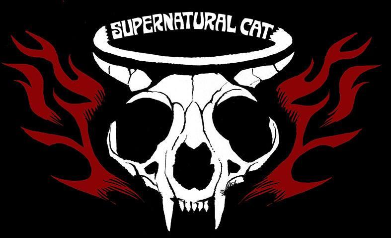 Supernatural Cat
