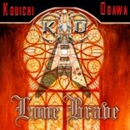 Kouichi Ogawa - Lone Brave