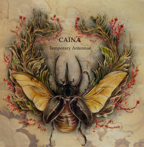 Caïna - Temporary Antennae