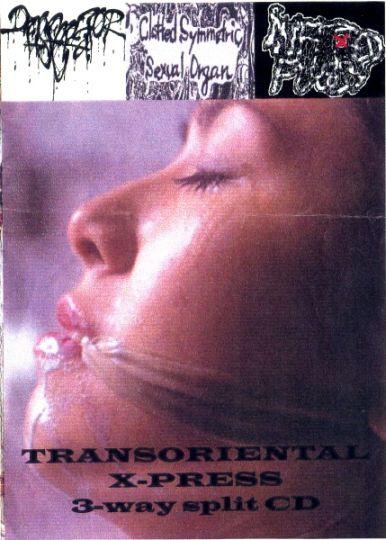 Clotted Symmetric Sexual Organ / Desecrator - Transoriental X-Press