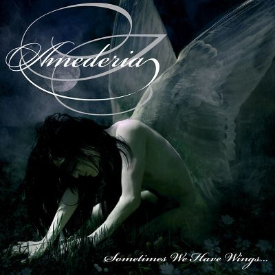 Amederia - Sometimes We Have Wings...