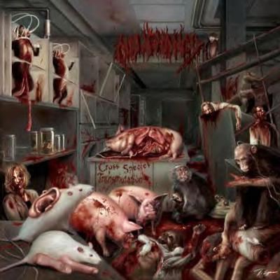 Malignancy - Cross Species Transmutation