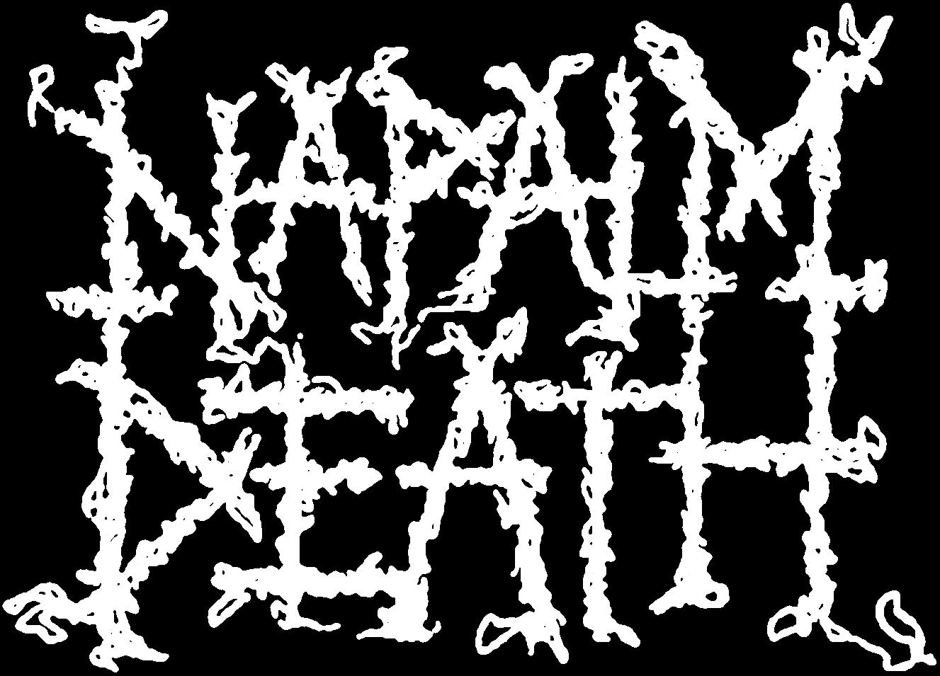 Napalm Death - Logo