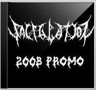 Vacillation - Demo 2008