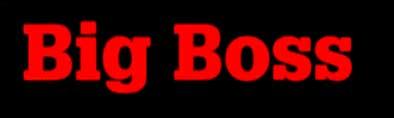 Big Boss - Logo