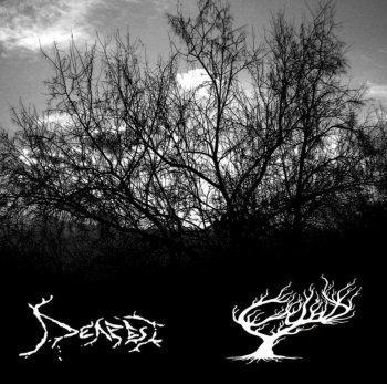 Deafest / Cynd - Deafest / Cynd
