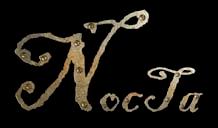 Nocta - Logo
