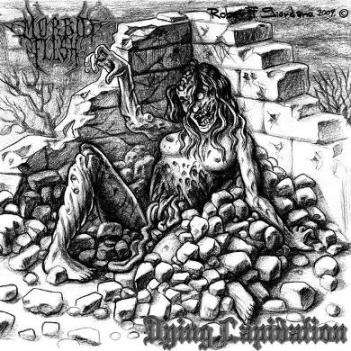 Morbid Flesh - Dying Lapidation