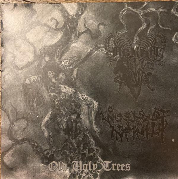 Woods of Infinity / Arkha Sva - Old Ugly Trees