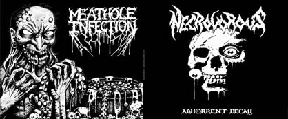 Necrovorous / Meathole Infection - Necrovorous / Meathole Infection