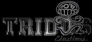 Tridus Elasticus - Logo