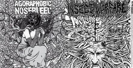 Insect Warfare / Agoraphobic Nosebleed - 5 Band Genetic Equalizer Pt.4 [In 4 Parts] / Untitled