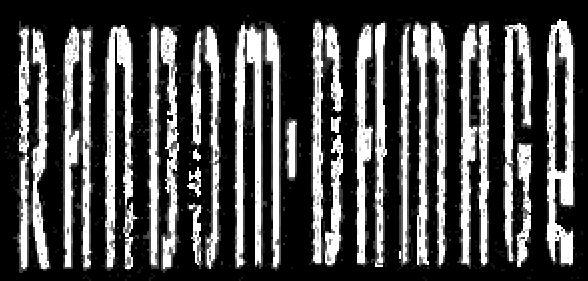 Random Damage - Logo