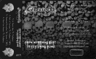 Cerekloth - From Morphing Dust to Festering Slime