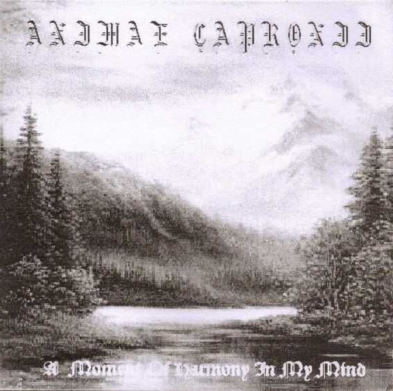 Animae Capronii - A Moment of Harmony in My Mind