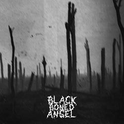 Black Boned Angel - Verdun