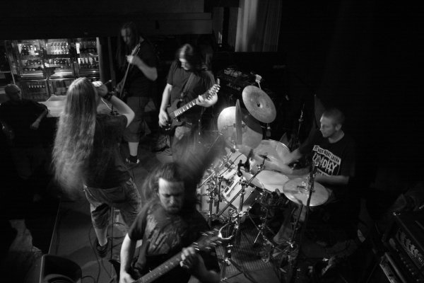 Infected Disarray - Photo