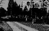Forlis - 13 Torture Traps