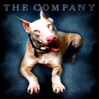 The Company - Awaking Under Dogs