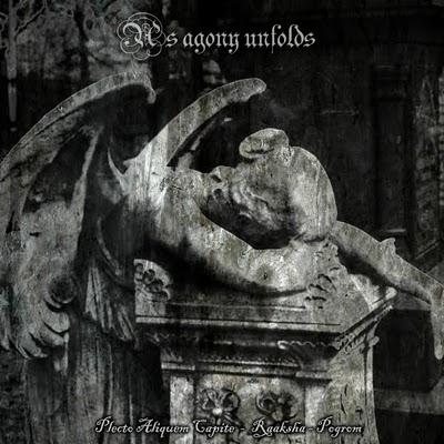 Plecto Aliquem Capite / Raaksha / Pogrom - As Agony Unfolds
