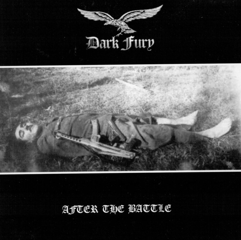 Dark Fury - After the Battle