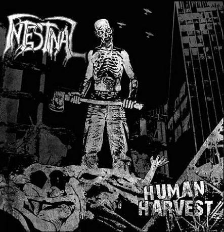 Intestinal - Human Harvest