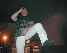 Ron Scauri
