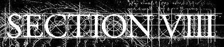Section VIII - Logo