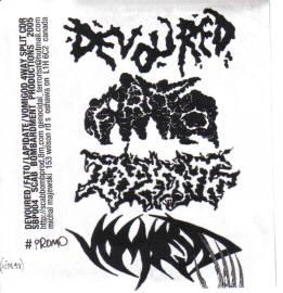 Lapidate / Vomigod / Devoured - Devoured / Forever Annihilating the Obese / Lapidate / Vomigod
