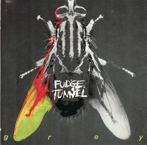 Fudge Tunnel - Grey