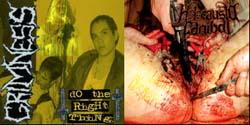 Holocausto Canibal / Grimness 69 - Do the Right Thing / Libido Dispareunia