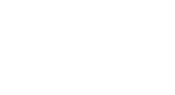 Necrotomy - Logo