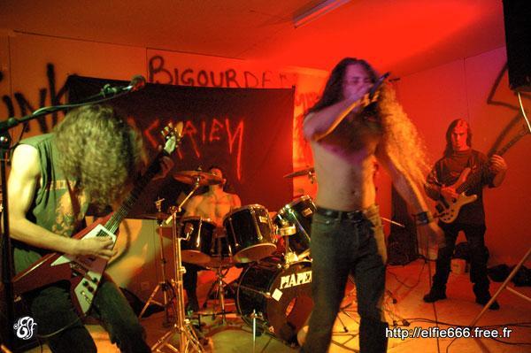 Acarien - Photo