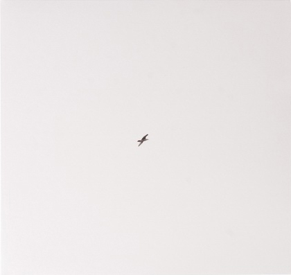 Cssaba - Like a See E Ea Gull