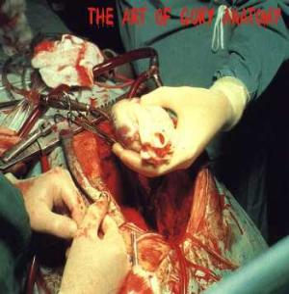 Rotten Penetration / Horror Blast / M.D.K. - The Art of Gory Anatomy