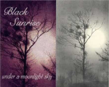 Black Sunrise - Under a Moonlight Sky