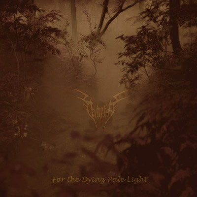 Taarma - For the Dying Pale Light