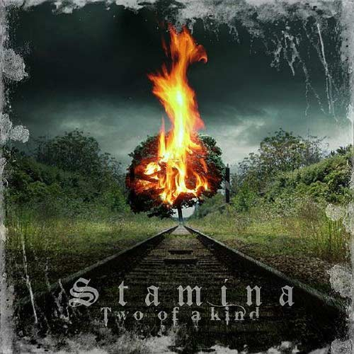 (Progressive Power Metal) Stamina (ex-Mind Key, Royal Hunt) - Two Of A Kind - 2010, FLAC (image+.cue), lossless