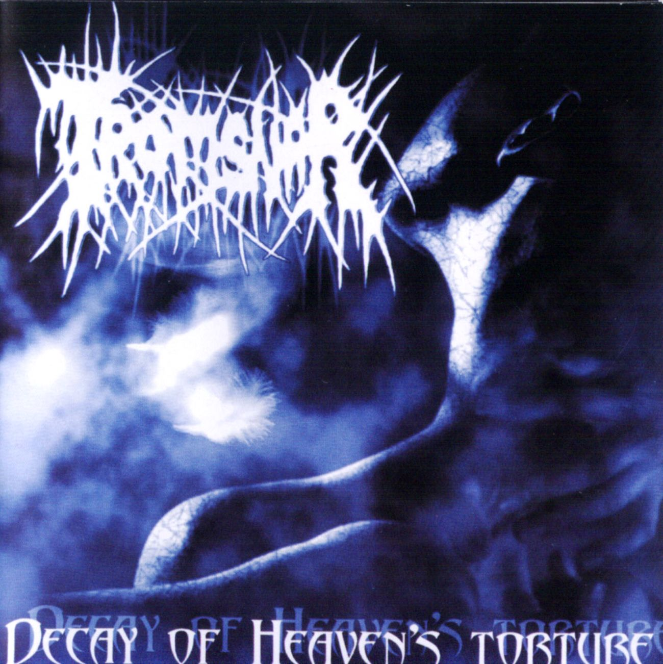 Tromsnar - Decay of Heaven's Torture