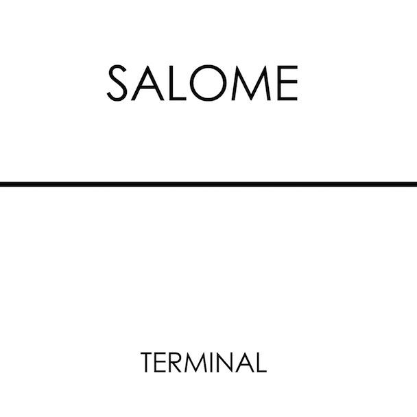 Salome - Terminal