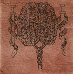 Pandiscordian Necrogenesis - Cerebral Quasaric Lacerations