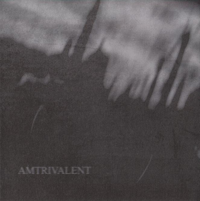 Lifeless Within / Fliegend / Negative or Nothing - Amtrivalent