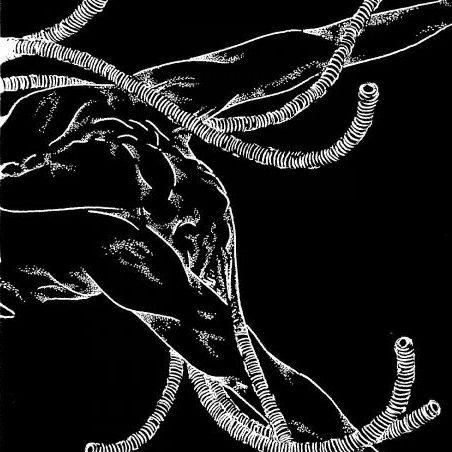 Cellgraft - Deception Schematic