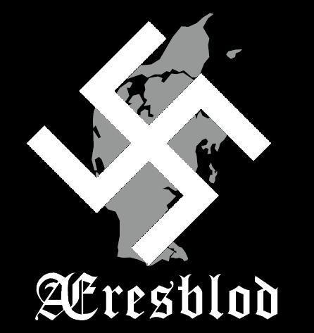 Æresblod - Division Midtjylland